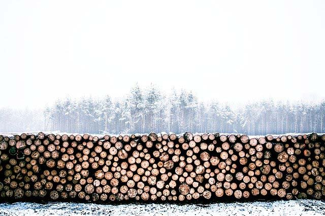 A fence of stacked logs and snow-covered trees beyond.