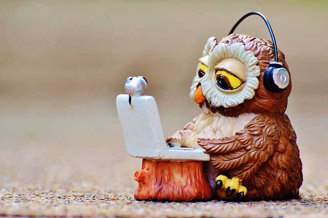 A novelty statue owl wearing headphones works at a laptop.
